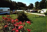 Camping am Alten Forsthaus